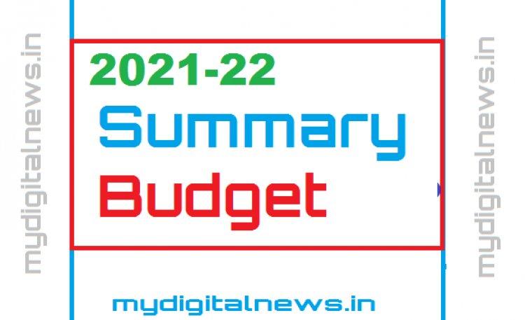 Summary of the Budget 2021-22