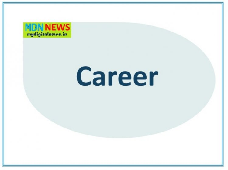 How to pick the right Career Option?
