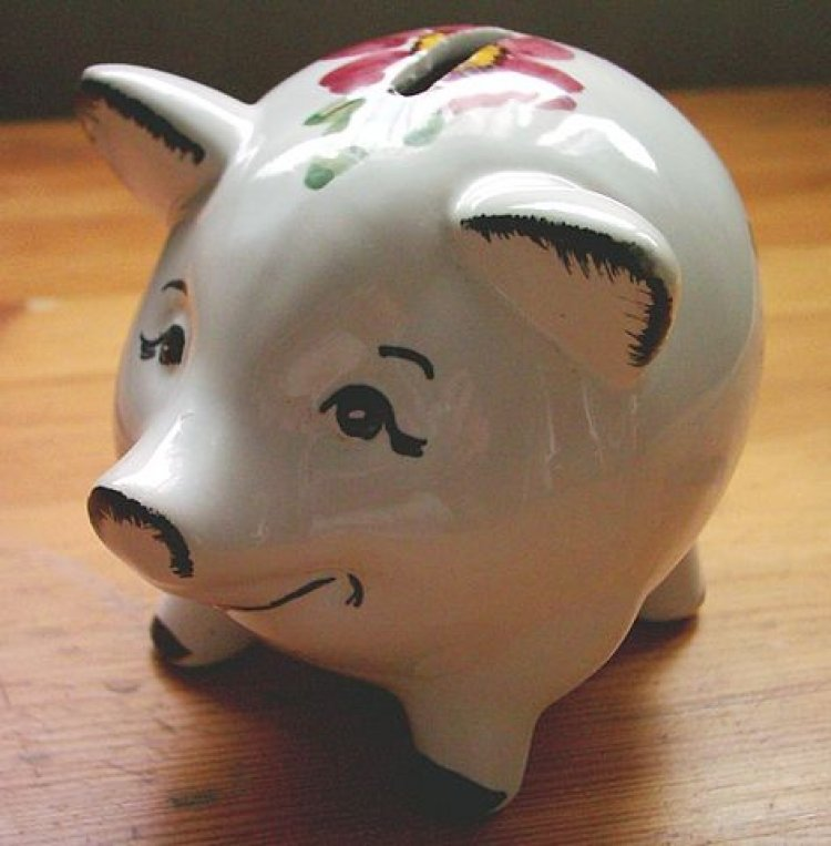 Interesting Facts about Piggy bank
